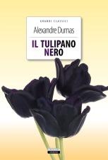 tulipano nero.jpg